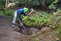 National Public Lands Day 2014 at Mount Rainier National Park (064), Narada.jpg