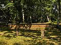 Naturpark Blockheide Gmünd - Meridian.jpg