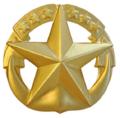Navy CaS.png