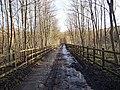 Netherwood Road Heasandford - geograph.org.uk - 651741.jpg