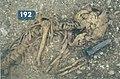 Neumarkt an der Ybbs Grab 192 FÖ 39 2000.jpg