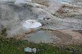 Norris Geyser Basin 3.jpg
