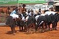 Ntjilenge Kalanga traditional group 3.jpg
