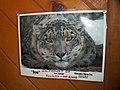Oaklawn Farm Zoo, May 16 2009 (3539698794).jpg