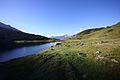 Oberhüttensee 26346 2016-06-23.JPG