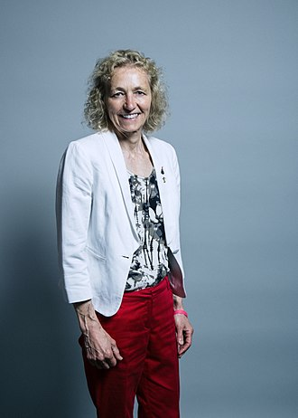 Shadow Secretary of State for Wales - Image: Official portrait of Christina Rees