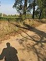 Okolice Latowicza - panoramio (1).jpg