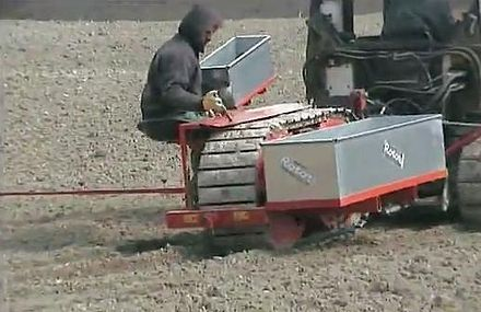 One operator planting a poplar cuttings with a Rotor machine for planting new nursery. - Plantation