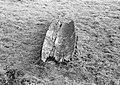 Opgraving prehistorie boot (200 jaar) Daarle (Hellendoorn), Bestanddeelnr 906-0726.jpg