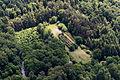 Ostbevern, Wald -- 2014 -- 8521.jpg
