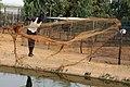 Pêcheur se déplaçant avec son filet.jpg