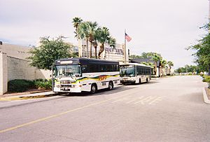 Pasco County Public Transportation - Image: PCPT Buses at Gulf View Square Mall