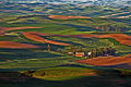 Palouse Hills from Steptoe Butte 2.jpg