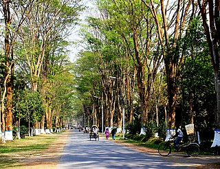 Paris road rajshahi.JPG
