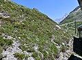 Passage au Col du Mont-Lachat vu du TMB (juin 2019).JPG