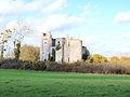 Passy-les-Tours-FR-58-château-04.jpg