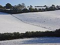 Pastures in snow, Cadmore End - geograph.org.uk - 1033895.jpg