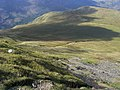 Path down to Buttermere Moss - geograph.org.uk - 1508264.jpg