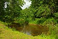 Peetri jõgi Karisöödi pargis.JPG