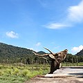 Penangkaran Rusa Ranca Upas, Kampung Cai, Kabupaten Bandung, Jawa Barat, Indonesia (7).jpg