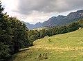 Per Malga Alvezza - panoramio.jpg