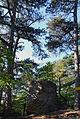 Perchtoldsdorf Kammerstein Bergfried Hangfront2.jpg