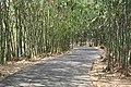 Phước Tân, Bien Hoa, Dong Nai, Vietnam - panoramio (3).jpg