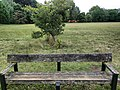 Photograph of a bench (OpenBenches 478).jpg