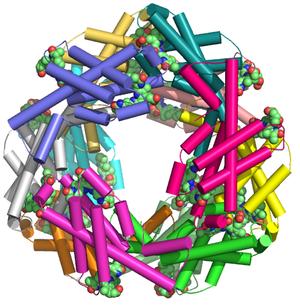 Phycocyanin - Allophycocyanin 12-mer PDB 1all