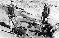 PikiWiki Israel 20810 The Palmach.jpg