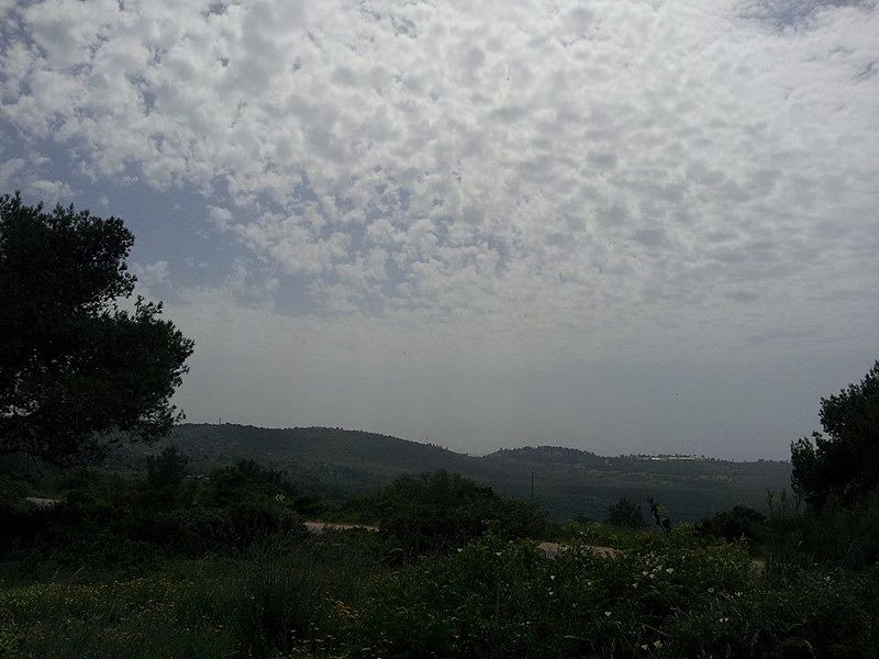 נוף בהר הכרמל