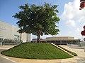PikiWiki Israel 51298 culture square.jpg