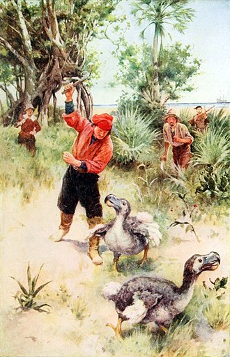 The dodo became extinct during the mid-to-late 17th century due to habitat destruction, hunting, and predation by introduced mammals. It is an often-cited example of modern extinction. Pioneers in South Africa (1914) (14576727409).jpg