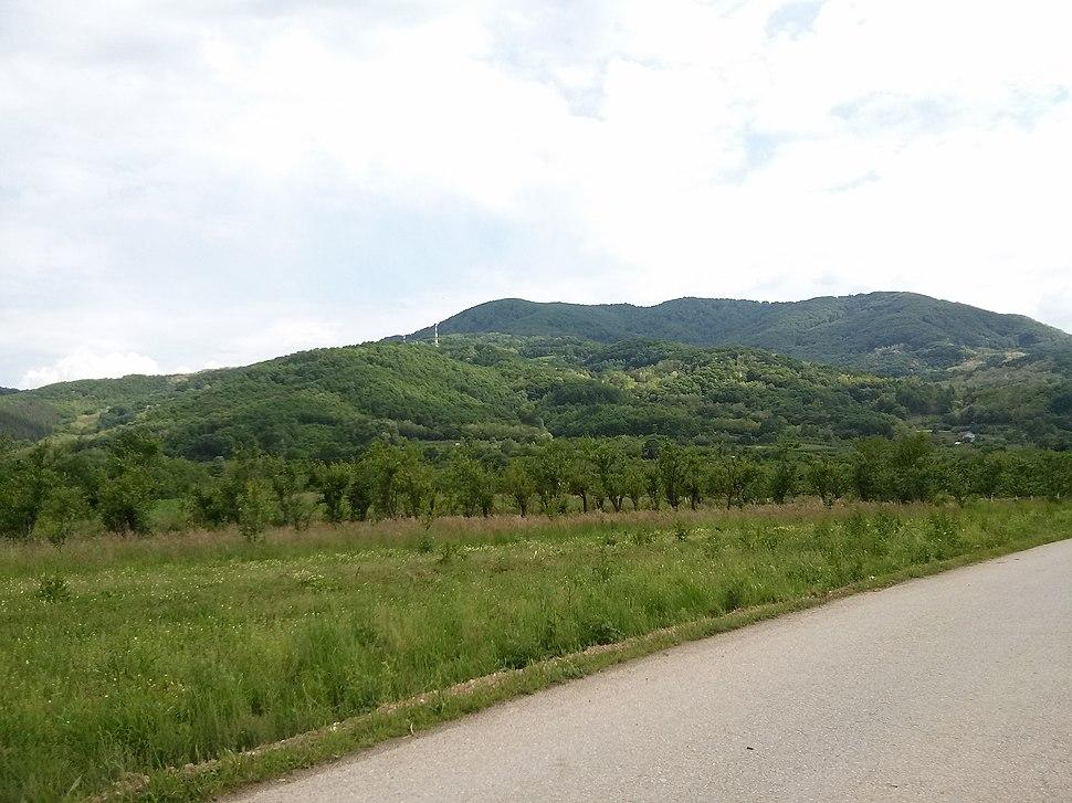 Planina Kukavica 09