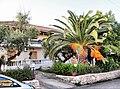 Planos 291 00, Greece - panoramio (7).jpg