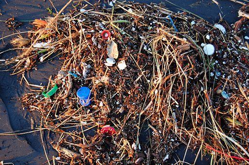 Plastic Ocean (4408273247)