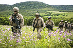 Platoon Assault, U.S. Marines team up with Spanish for live-fire training 150504-M-ZB219-433.jpg