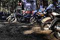 Plenty of bikes (6066239764).jpg