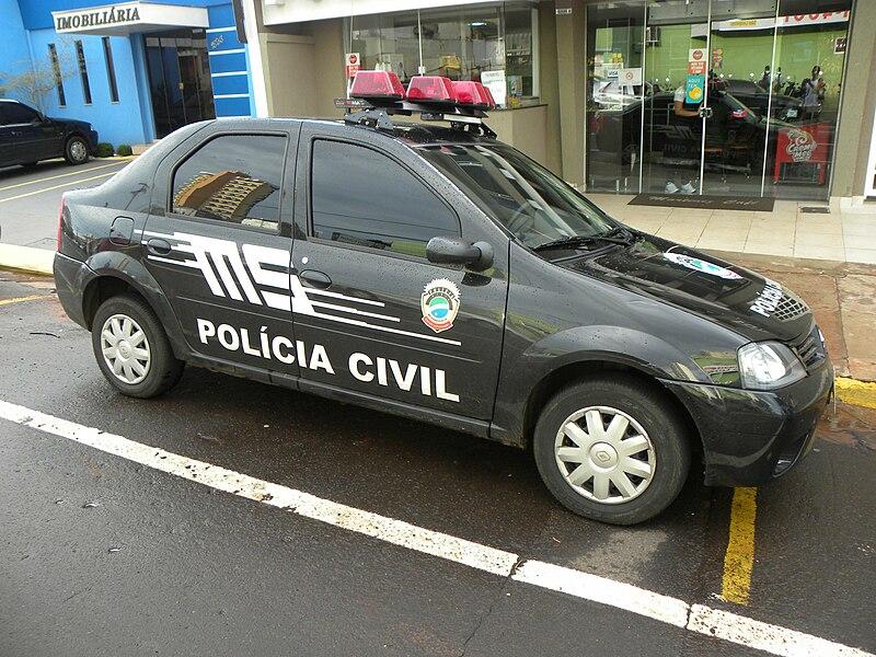 Police car - MS.JPG