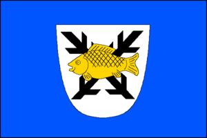 Polná - Image: Polna CZ flag