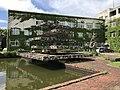 Pond in Hakozaki Campus of Kyushu University 3.jpg