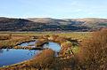 Ponds at Ynyshir - geograph.org.uk - 1064333.jpg