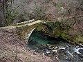 Ponte medieval de Fofe, Covelo.jpg