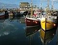 Portavogie Harbour - geograph.org.uk - 1499369.jpg