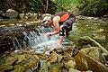 Potok Wapienica.jpg