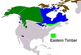 Present distribution of the gray wolf subspecies - Eastern Timber wolf (Canis lupus lycaon).jpg
