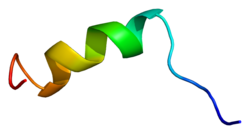 Protein SCN2A PDB 1byy.png