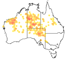 map of australia showing the distribution of pseudomys desertor across various states