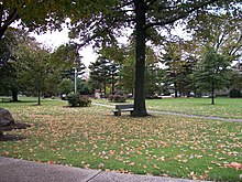 picture of a public park, with fallen leaves, and pine trees in the distance, and a small statue in the middle.