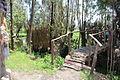 Puente construído de ramas.JPG